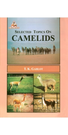 Selected Topics On Camelids Dr.T.K.Gahlot